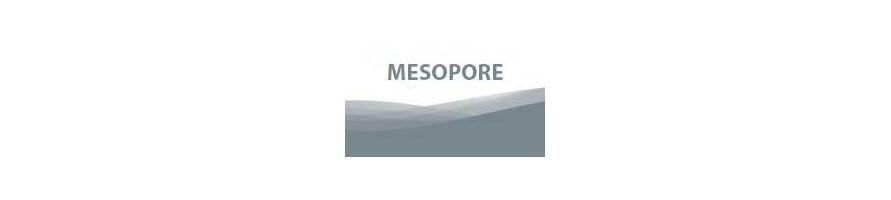 MESOPORE